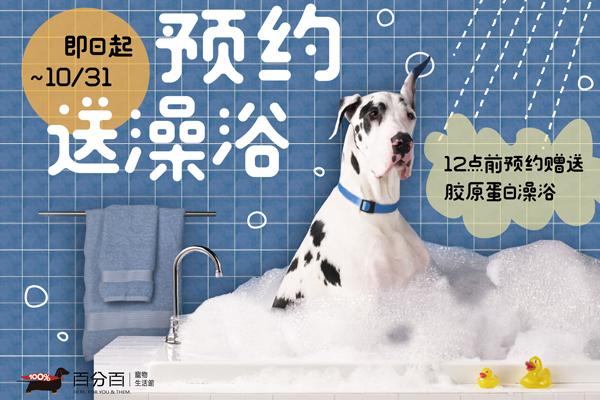 ~十月洗澡優惠~