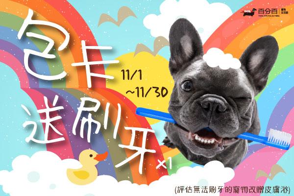 【11月美容活動】包卡送刷牙
