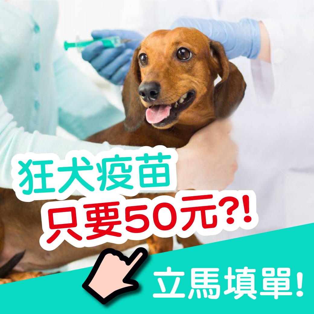 【狂犬疫苗銅板價!!】聯盟動物醫院 旗楠分院開幕 好禮享不完