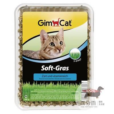 GIMPET香味軟貓草盒裝100g